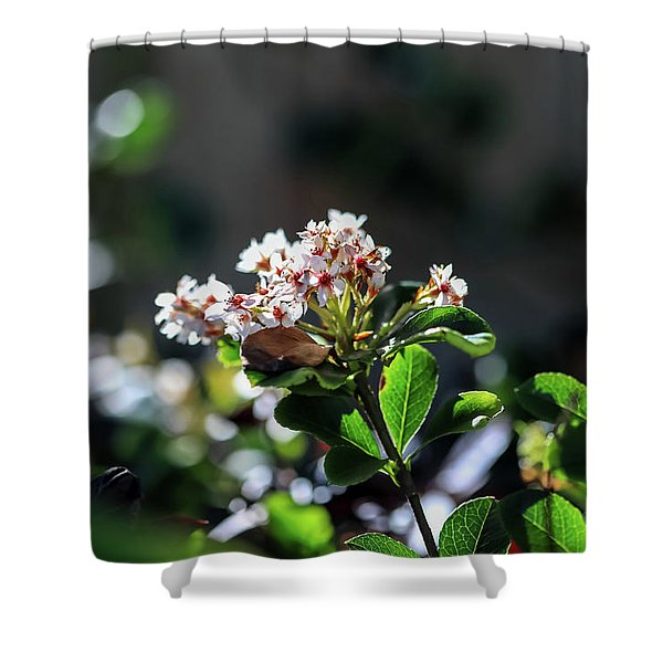 Beautiful Blooms Shower Curtain