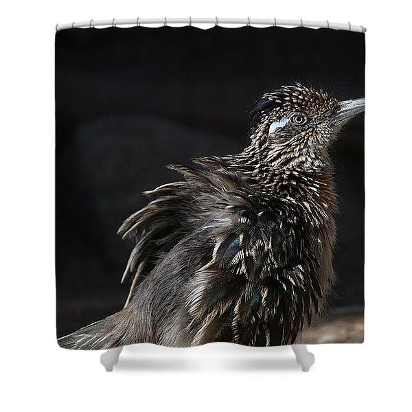Fluffy Roadrunner Shower Curtain