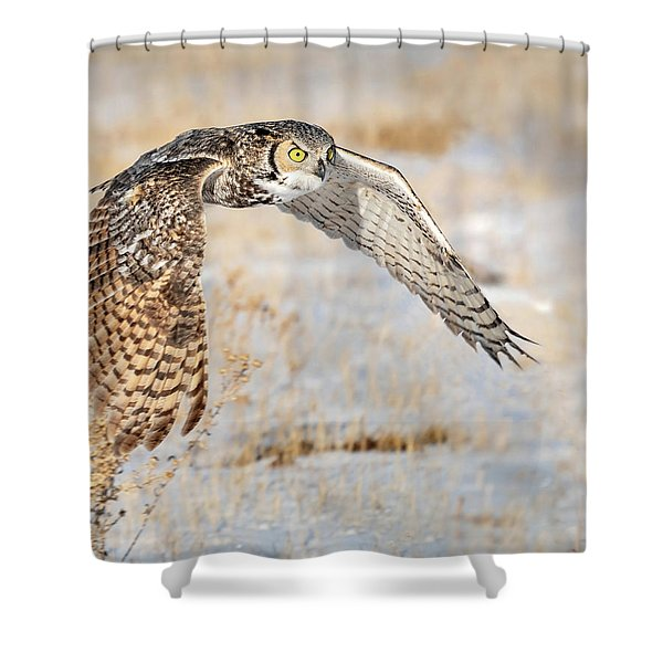 Flying Great Horned Owl Shower Curtain
