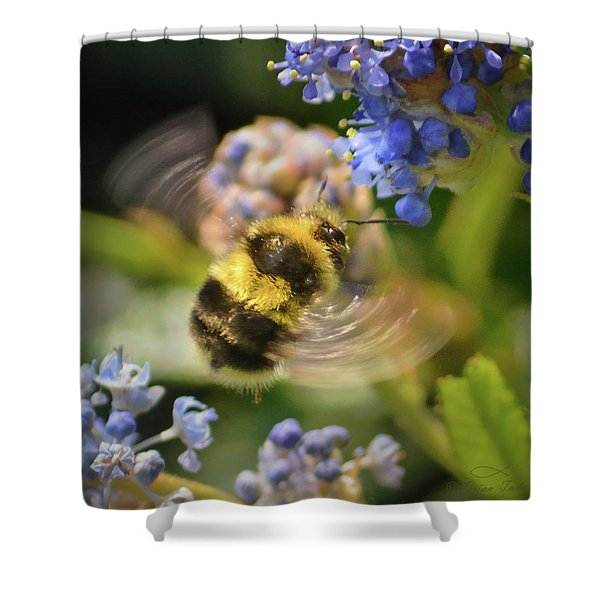 Flying Miracle Shower Curtain