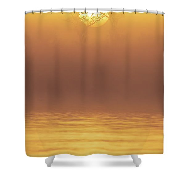 Foggy Wetlands Sunrise Shower Curtain