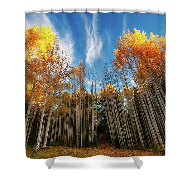 Follow The Yellow Leaf Road Shower Curtain