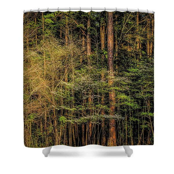 Forest Dogwood Shower Curtain