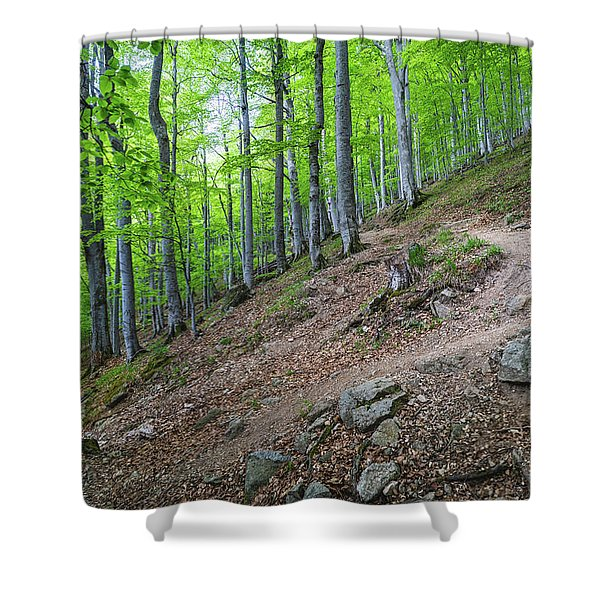 Shower Curtain featuring the photograph Forest On Balkan Mountain, Bulgaria by Milan Ljubisavljevic