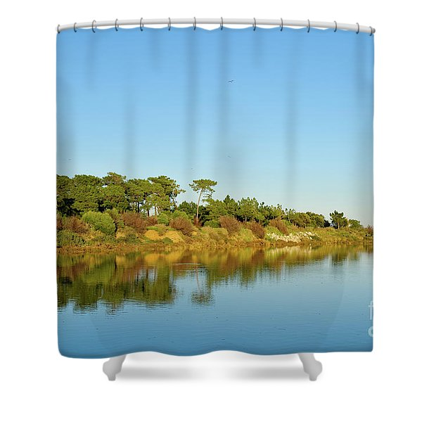 Forests Mirror Shower Curtain