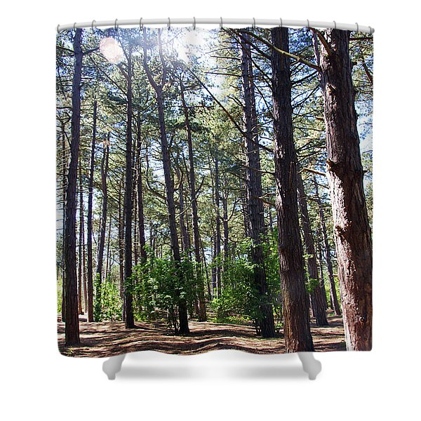 Formby. Woodland By The Coast Shower Curtain
