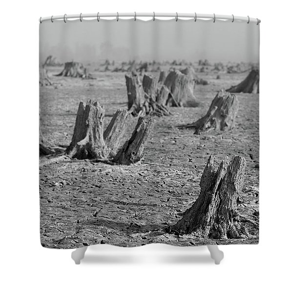 Forrest Shower Curtain