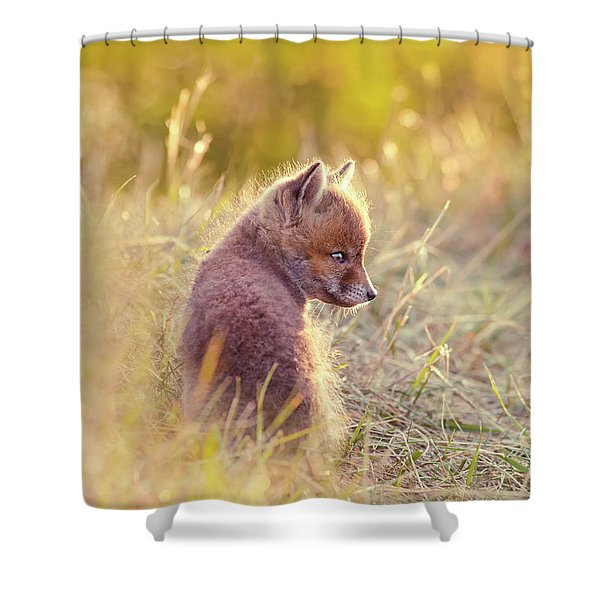 Fox Kit Series - Cuteness In Foxcoat Shower Curtain