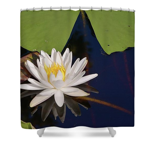 Fragrant Water Lily Shower Curtain