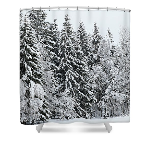 French Alps, Snow Covered Fir Trees In Winter  Photo Shower Curtain