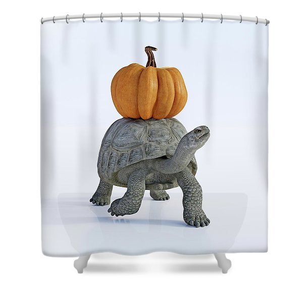 Friends The Tortoise And The Pumpkin Shower Curtain