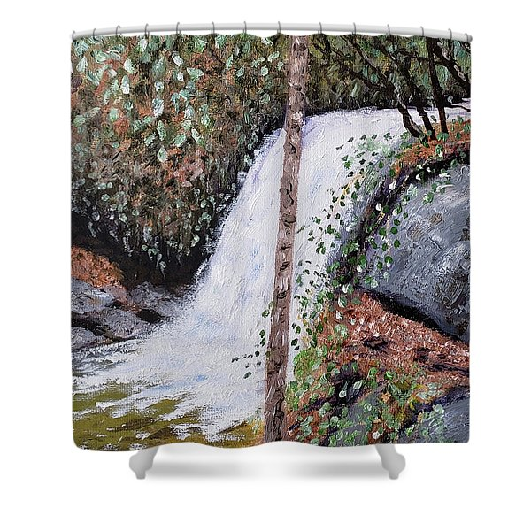 Frolictown Falls Shower Curtain
