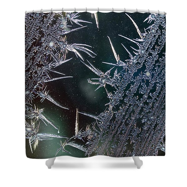 Frost Design Shower Curtain