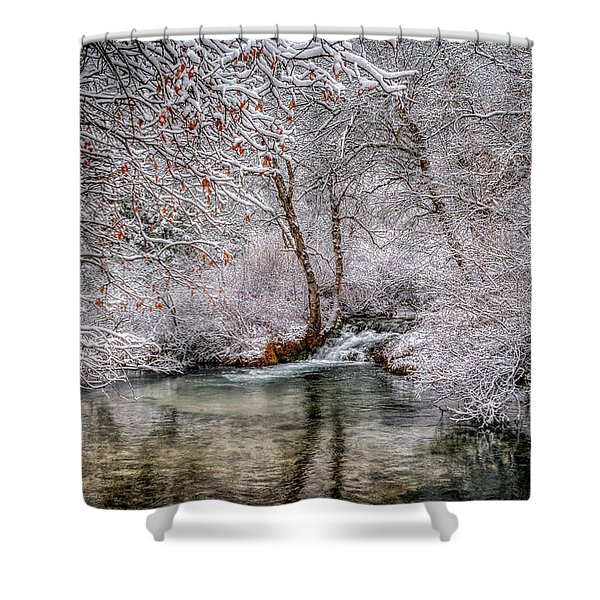 Frosty Pond Shower Curtain