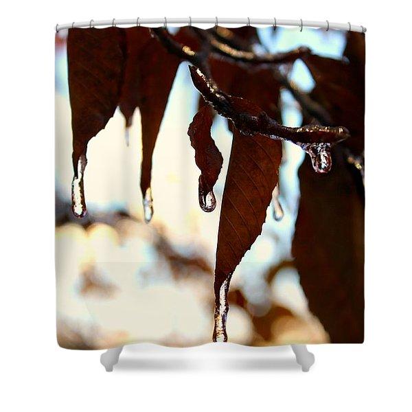 Frozen Autumn  Shower Curtain