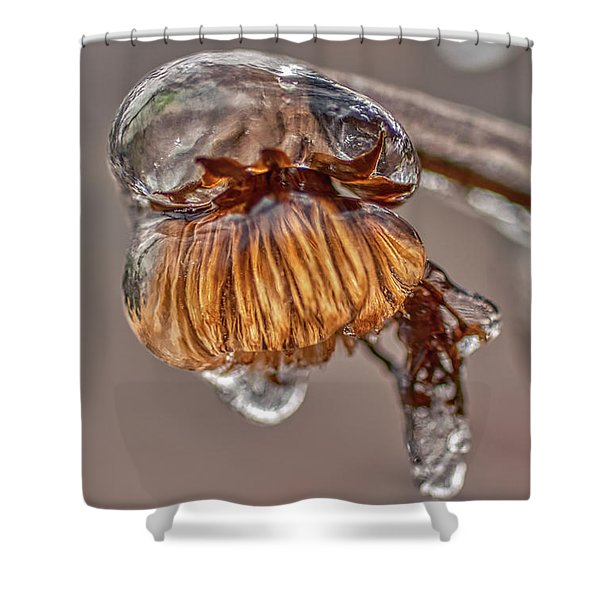 Shower Curtain featuring the photograph Frozen Blond by Meta Gatschenberger