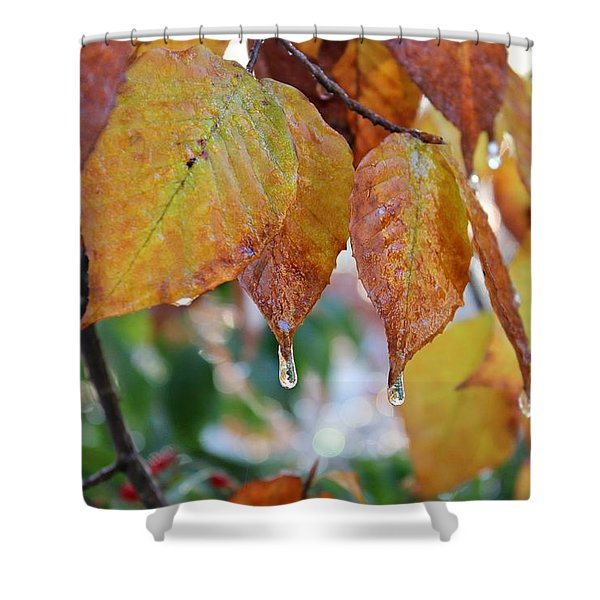 Icy Foliage Shower Curtain