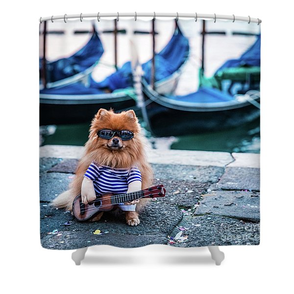 Funny Dog At The Carnival In Venice Shower Curtain