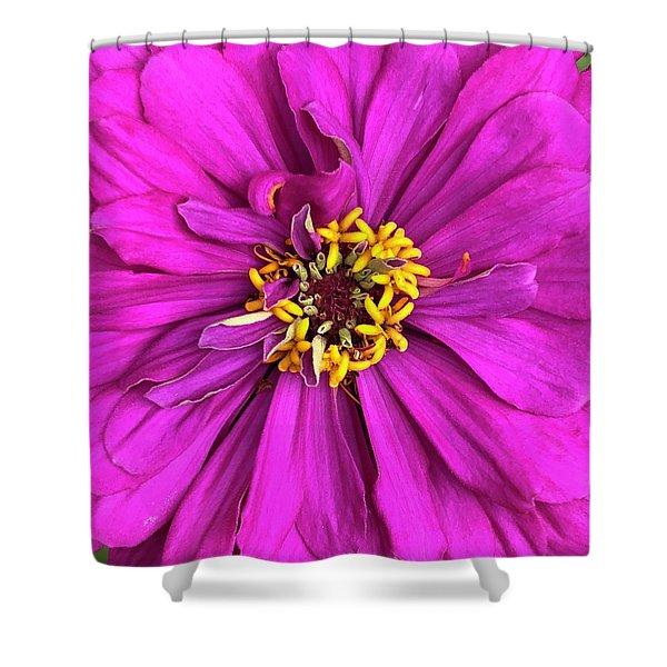 Fuschia Bloom Shower Curtain