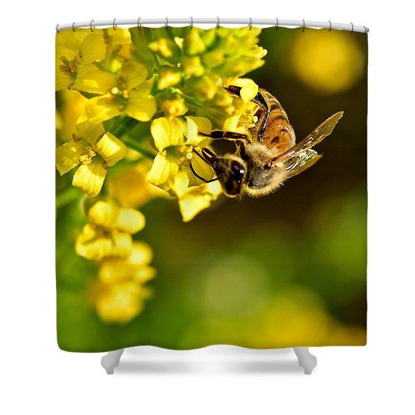 Gathering Pollen Shower Curtain