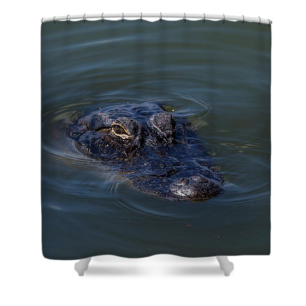 Gator Stare Shower Curtain