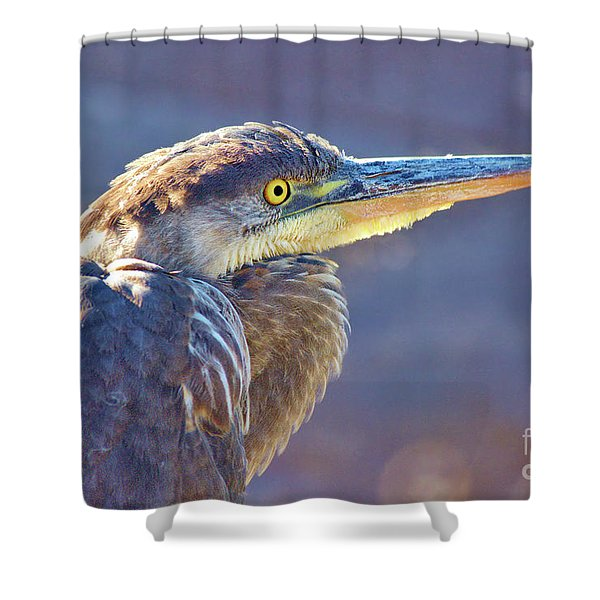 Gbh Waiting For Food Shower Curtain