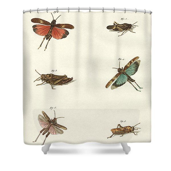 German Hoppers  Shower Curtain