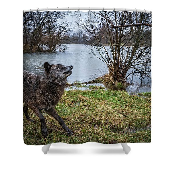 Get The Stick Shower Curtain