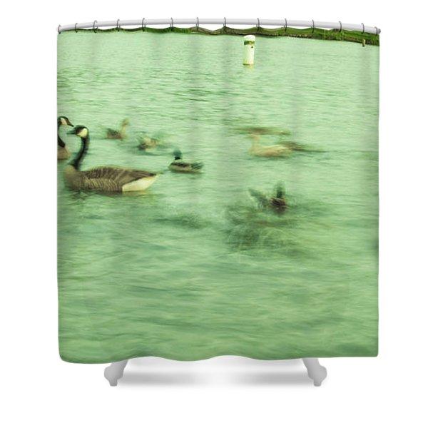 Ghost Ducks Shower Curtain