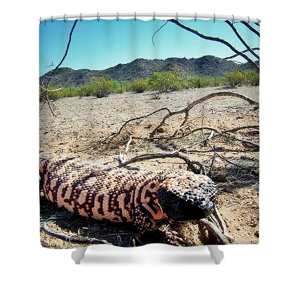 Gila Monster In The Arizona Sonoran Desert Shower Curtain
