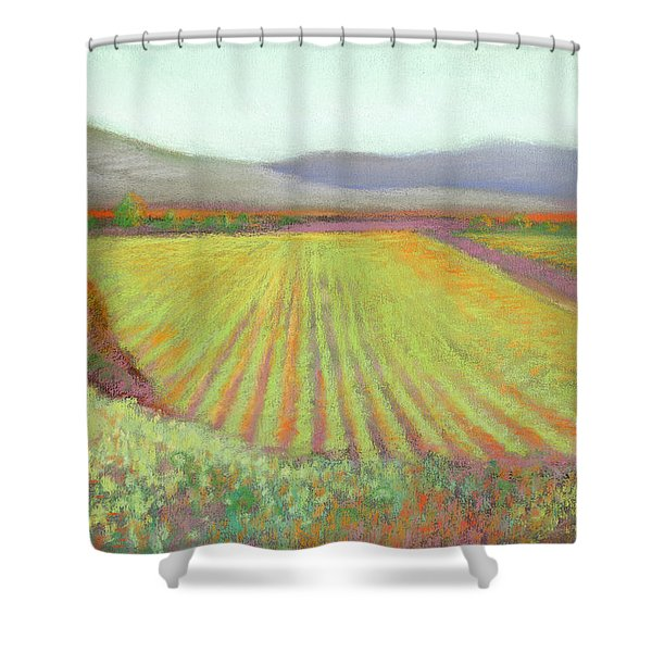 Gloria Ferrer Winery Shower Curtain