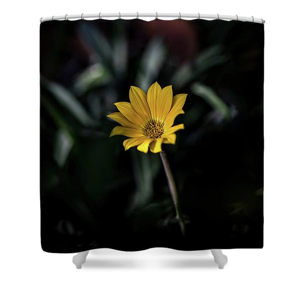 Glowing Brightly Shower Curtain