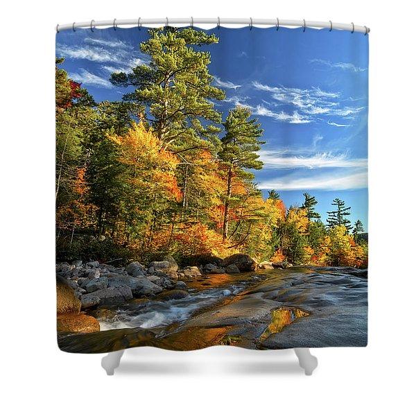 Golden Autumn Light Nh Shower Curtain