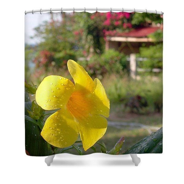 Golden Dew Shower Curtain