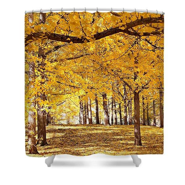 Golden Ginkgo Shower Curtain