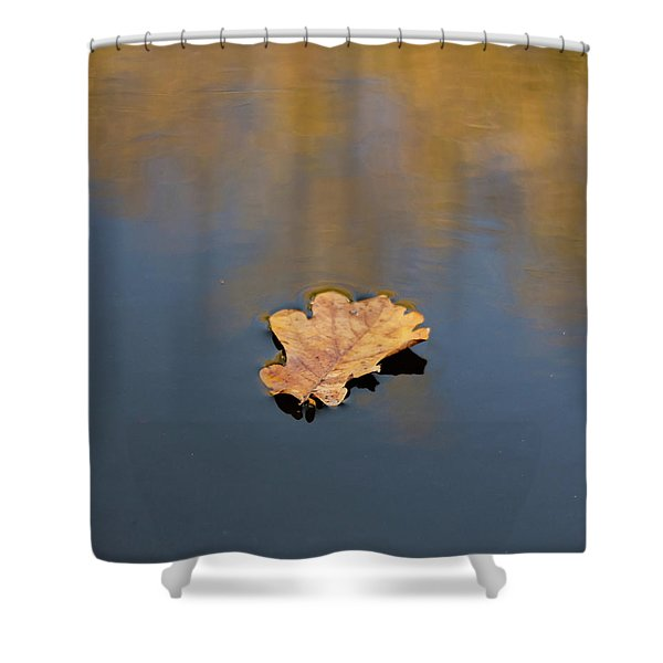 Shower Curtain featuring the photograph Golden Leaf On Water by Scott Lyons