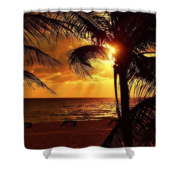 Golden Palm Sunrise Shower Curtain