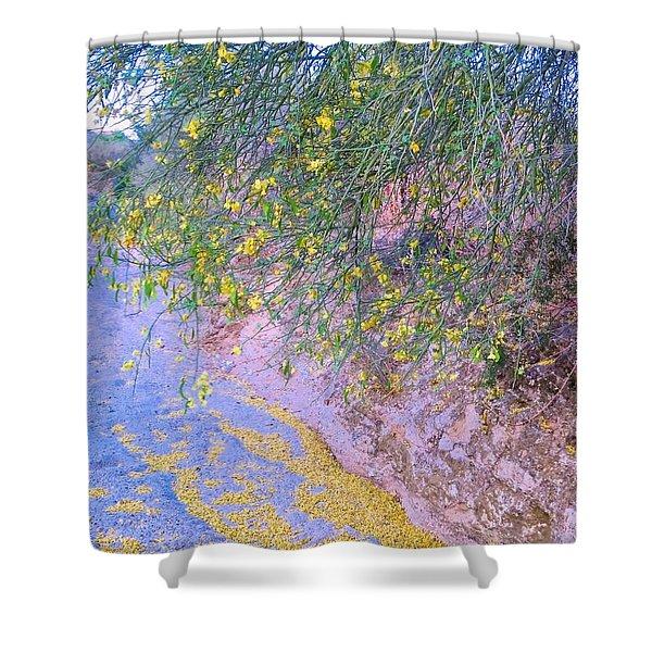 Golden Petals In A Desert Wash Shower Curtain