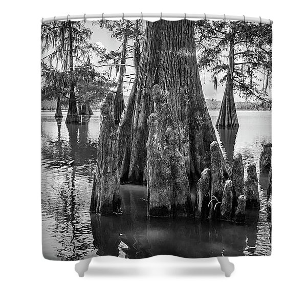 Grand Lake Cypress Shower Curtain