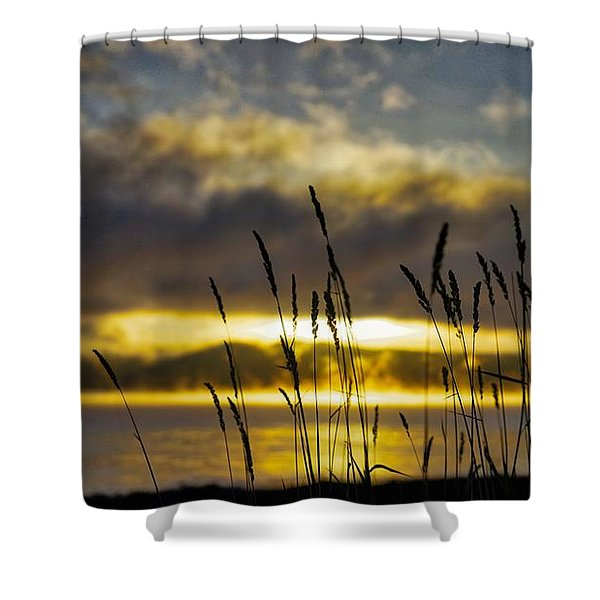 Shower Curtain featuring the photograph Grassy Shoreline Sunrise by Tom Gresham