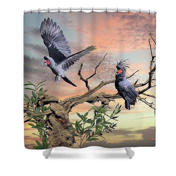 Great Black Cockatoo Pair Shower Curtain