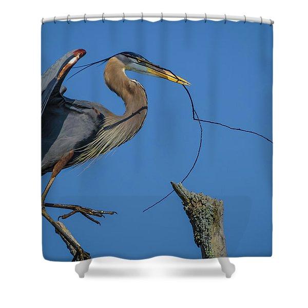 Great Blue Heron 4034 Shower Curtain