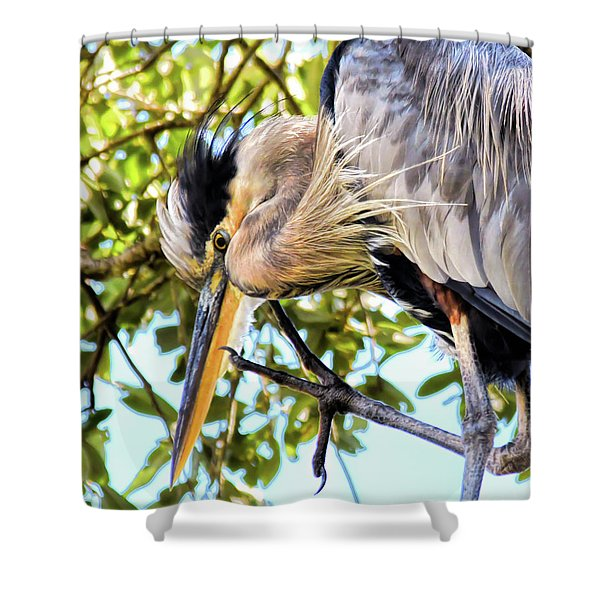 Great Blue Heron Close Up Shower Curtain