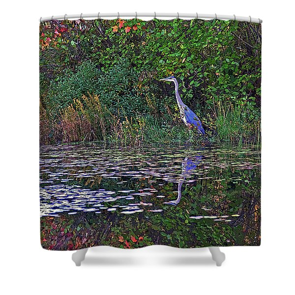 Great Blue Heron In Autumn Shower Curtain