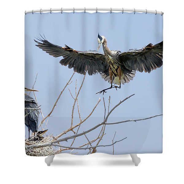 Great Blue Heron Rookery 2 Shower Curtain