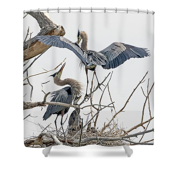 Great Blue Heron Rookery 5 Shower Curtain
