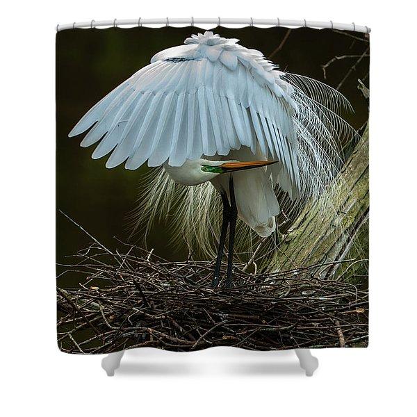 Great Egret Beauty Shower Curtain