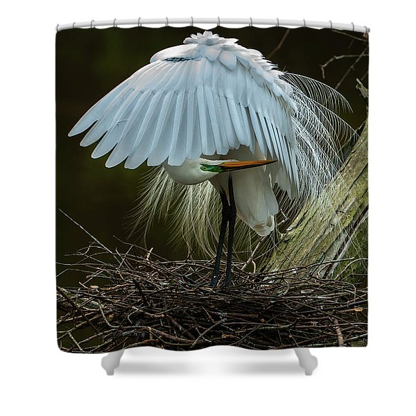 Great Egret Beauty Shower Curtain