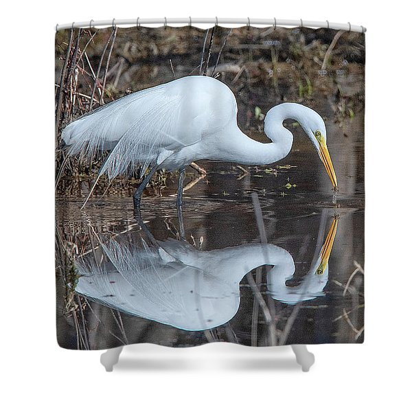 Great Egret In Breeding Plumage Dmsb0154 Shower Curtain
