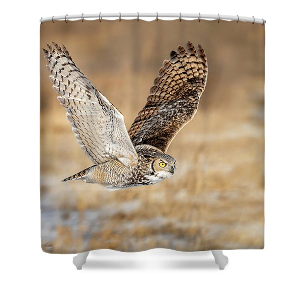Great Horned Owl In Flight Shower Curtain